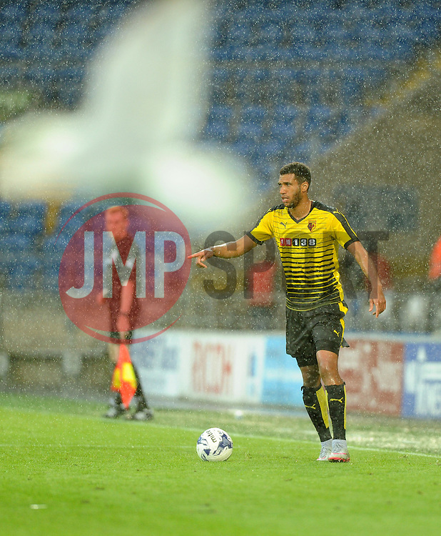 Etienne Capoue of Watford and a seagull  - Mandatory by-line: Joe Meredith/JMP - 07966386802 - 28/07/2015 - SPORT - FOOTBALL - Cardiff,Wales - Cardiff City Stadium - Cardiff City v Watford - Pre-Season Friendly
