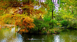 An autumn scene in the Jardin des Plantes, Toulouse, France<br /> <br /> (c) Andrew Wilson | Edinburgh Elite media