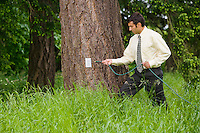 A mixed race businessman holding an electrical extension cord about to plug it in to a electrical outlet on a tree in a grassy field.