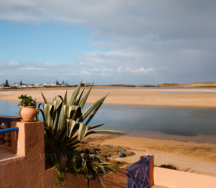 The lagoon and beaches in Oualidia, Morocco.as viewed from L'Hippocampe.