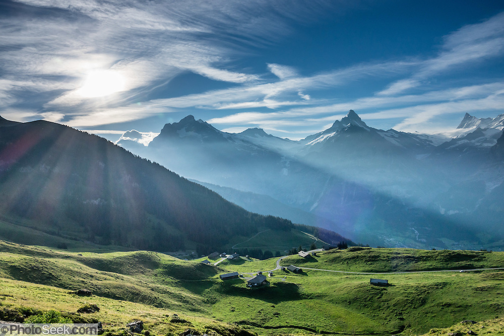 Seen from upper Bussalp, Wetterhorn, Schreckhorn, and Finsteraarhorn (left to right) rise impressively above Grindelwald, in Switzerland, the Alps, Europe. The Finsteraarhorn (at left 4274 m / 14,022 ft) is the highest mountain in the Bernese Alps and the most prominent peak of Switzerland (in terms of height above the lowest topographic contour at the mountain's base). The Schreckhorn (4078 m / 13,379 ft) is the northernmost summit rising above 4000 meters in Europe. This whole massif and surrounding glaciers were designated as part of UNESCO's Jungfrau-Aletsch World Heritage Site.