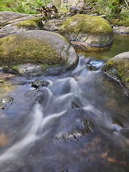 Sunlight falls through spring leaves onto the waterfalls over the boulder strewn vally at Becky Falls on the Becka Brook near Manaton on Dartmoor Devon England.
