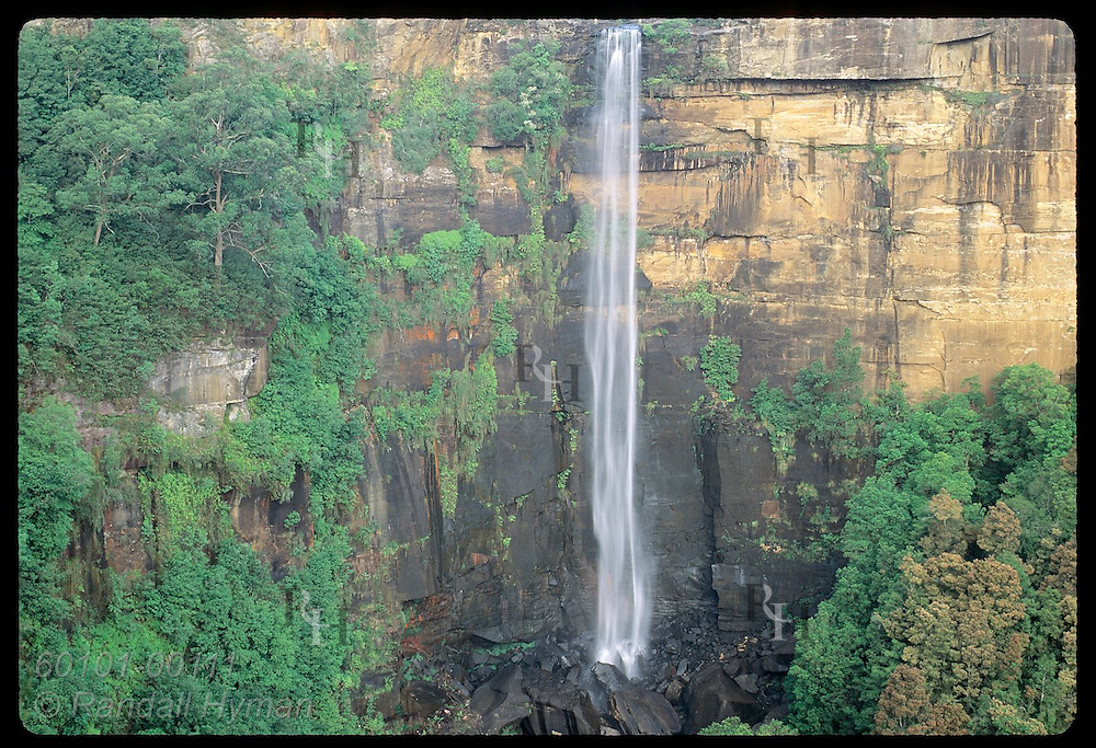 Fitzroy Falls plummets 81m over escarpment in Southern Highlands of Great Dividing Range; (h) NSW Australia