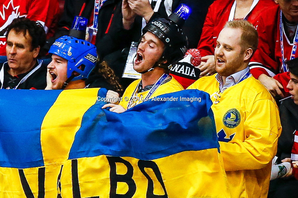 Swedish fans celebrate a Team Sweden goal during the 2015 IIHF Junior World Championships.