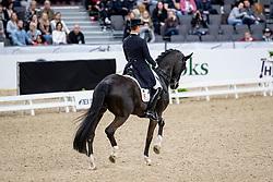 WERNDL Benjamin (GER), Daily Mirror 9<br /> Göteborg - Gothenburg Horse Show 2019 <br /> FEI Dressage World Cup™ Final I<br /> Int. dressage competition - Grand Prix de Dressage<br /> Longines FEI Jumping World Cup™ Final and FEI Dressage World Cup™ Final<br /> 05. April 2019<br /> © www.sportfotos-lafrentz.de/Stefan Lafrentz