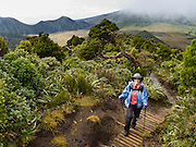 A tramper hikes the Pouakai Track, Taranaki / Mount Egmont National Park, New Zealand, North Island For licensing options, please inquire.