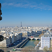 View overlooing the city of Paris from the top of Notre Dame de Paris Cathedral. At left is one of the many gargoyles featured on the structure.