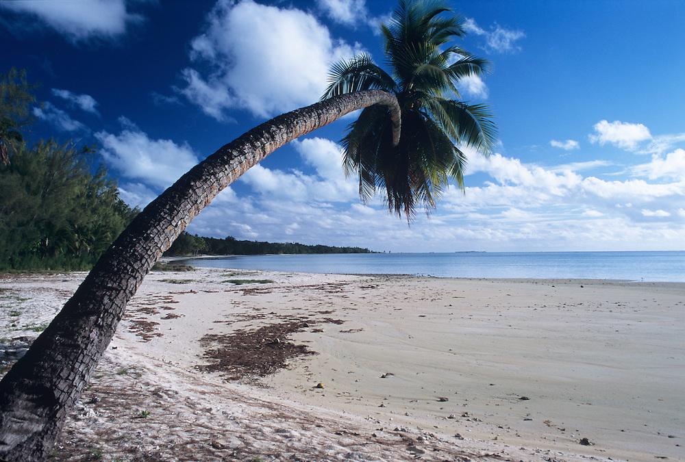 Cook Islands, K?ki '?irani, South Pacific Ocean, Aitutaki, beach scenic