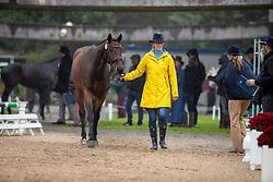 Bölting Vanessa, GER, Ready To Go W<br /> Mondial du Lion - Le Lion d'Angers 2019<br /> © Hippo Foto - Dirk Caremans<br />  16/10/2019