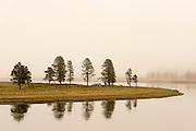 A small peninsula juts out along Alum Creek in Yellowstone's Hayden Valley