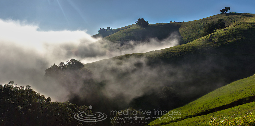 California, Mount Tamalpais, Heaven and earth merging as the morning fog caresses undulating green hills
