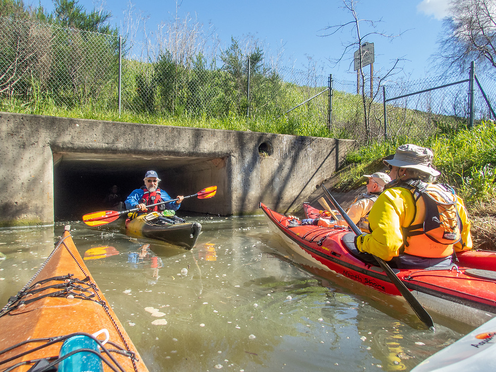 BASK Thursday Paddle on Gallinas Creek.