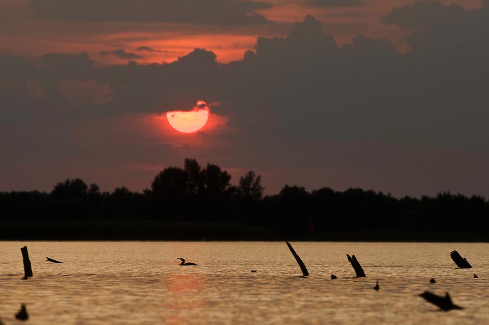 Tisza lake at dusk, Hortobagy National Park, Hungary