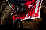 ARCADIA, CA - MARCH 11: The saddle cloth for Frank E. Kilroe Mile Stakes winner Bal a Bali at Santa Anita Park on March 11, 2017 in Arcadia, California. (Photo by Alex Evers/Eclipse Sportswire/Getty Images)