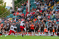 KELOWNA, BC - AUGUST 17:  Brycen Mayoh #4 misses a catch as Nathan Falito #1 of Westshore Rebels looks to recover the ball in front of the Okanagan Sun team bench at the Apple Bowl on August 17, 2019 in Kelowna, Canada. (Photo by Marissa Baecker/Shoot the Breeze)