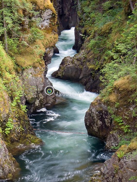 Vancouver Island, BC, Canada.Little Qualicum Falls, Provincial Park. / Pequenas quedas de Qualicum, Parque Provincial..Foto Marcos Issa/Argosfoto