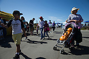 A woman carries multiple pumpkins in her stroller during Santa Clara County Park's Day on the Bay event at Don Edwards San Francisco Bay National Wildlife Refuge in Alviso, California, on October 9, 2016. (Stan Olszewski/SOSKIphoto)