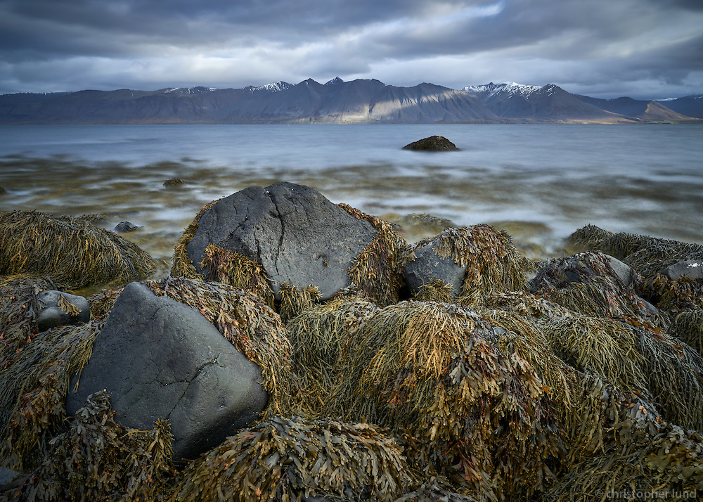 Seascape in Arnarfjörður, mount Bauluhúsashyrna in background. West fiords of Iceland.