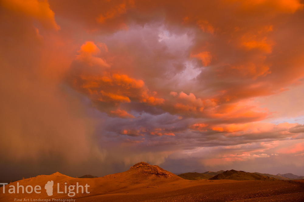 Stormy sunset over wildflowers in the white mountains in California outside of Bishop