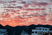 "Magenta sunset light illuminates clouds over Nachikatsuura, Higashimuro District, Wakayama Prefecture, Japan. The impressive Kumano Nachi Taisha, one of the three Kumano Shrines, is just 20 minutes by bus from Nachi Station. These shrines form part of the ""Sacred Sites and Pilgrimage Routes in the Kii Mountain Range"" UNESCO World Heritage Site. In Nachikatsuura, don't miss the impressive tuna market auction at 7:00am, easily viewed from above in the open public gallery. (In contrast, Tokyo's restrictive early morning fish auction at Toyosu Market limits viewers via registration and a wall of glass). Japan is the world's biggest consumer of tuna."
