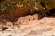 Horse Collar ruin in White Canyon. Natural Bridges Natl. Monument, Utah