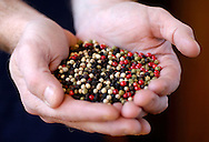 25 JAN 2005:  Mike Johnston displays a mound of mulitcolored peppercorns during a shoot at the Savory Spice Shop in Denver, CO.  &copy;2004 Brett Wilhelm/Brett Wilhelm Photography<br />