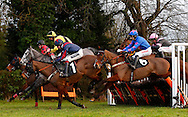 Plumpton, UK, 16th January 2017<br /> Race winner Kings Walk ridden by Paddy Brennan (Blue Silks with Pink stars) clear a early hurdle during the EPDS Racing Welfare BTO Series 2017 Maiden Hurdle at Plumpton Racecourse.<br /> &copy; Telephoto Images / Alamy Live News