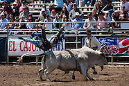 Lakeside Rodeo 2009