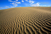 The Great Sand Hills Ecological Reserve near Leader, Saskatchewan