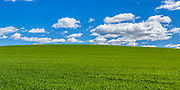 grass hill under blue sky and clouds