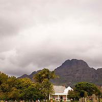 Winery in Stellenbosch, South Africa.