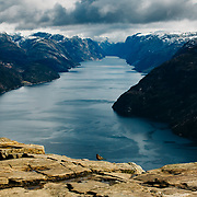 A bird stands on the edge of Preikestolen (Pulpit Rock) in Norway
