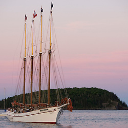 The four masted schooner, Margaret Todd, sets sail in Frenchman Bay.  Bar Harbor, Maine.  Mount Desert Island.  Sunset.