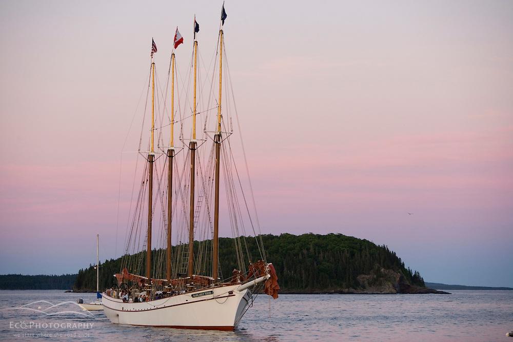 The four masted schooner, Margaret Todd, sets sail in Frenchman Bay.  Bar Harbor, Maine.  Mount Desert Island.  Sunset.
