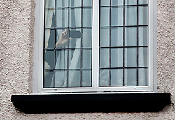 © Licensed to London News Pictures. 21/12/2017. London, UK. A hand is seen holding a phone in a window of Damian Green's house as reporters stand outside. Mr Green resigned as first minister yesterday. Mr Green has been under investigation after pornographic images were found on his Parliamentary computer and allegations of inappropriate advances towards a female activist. London, UK. Photo credit: Peter Macdiarmid/LNP