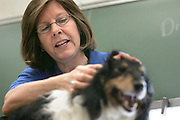 Athens veterinarian Barbara Shelor uses her dog to demonstrate her profession to an overflow audience of girls during the 31st Women in Science and Engineering Program at O.U. on Wednesday, 4/25/07.