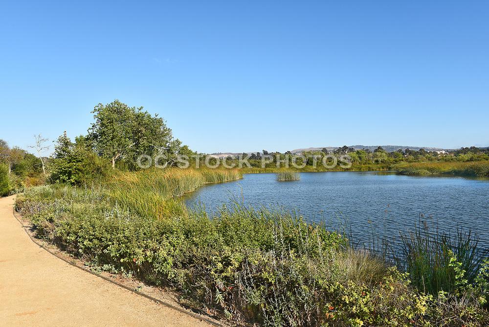 Irvine San Joaquin Marsh Trail