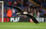 Crystal Palace v Charlton Athletic - Capital One Cup - 23/09/2015