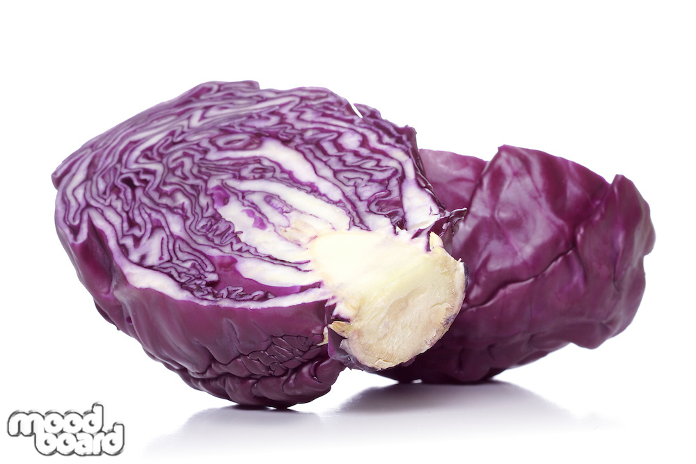 Studio shot of red cabbage