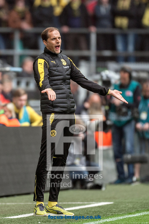 Thomas Tuchel, head coach of Borussia Dortmund during the Bundesliga match at Signal Iduna Park, Dortmund<br /> Picture by EXPA Pictures/Focus Images Ltd 07814482222<br /> 14/05/2016<br /> ***UK &amp; IRELAND ONLY***<br /> EXPA-EIB-160515-0088.jpg