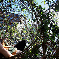 Nederland, Amsterdam , 2 juli 2014.<br /> Eindexamen werk van rietveld kunstacademie studente Anne van klooster, The Plantable genaamd.<br /> The Plantable Home is a portable living space, that invites to think about a possible future with living houses.<br /> Foto:Jean-Pierre Jans