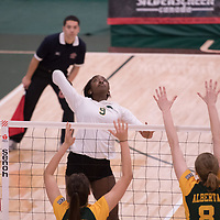 3rd year outside hitter Diana Lumbala (9) of the Regina Cougars in action during Women's Volleyball home game on November 3 at Centre for Kinesiology, Health and Sport. Credit: Casey Marshall/Arthur Images