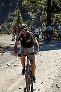 Spanien, Kanarische Inseln, Teneriffa..Teide Nationalpark, Gruppe Mountainbiker auf Forstweg..|..Spain, Canary Islands, Tenerife..Teide National Park, volcano landscape, group of mountain bikers