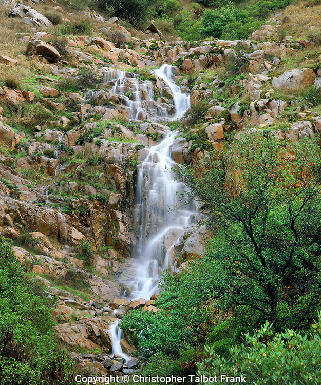 I just had to photograph this rare occurrence of a heavy rain induced Mission Trails Waterfall.   This hidden lush green falls in Mission Trails Regional Park of San Diego is rarely seen nor photographed.