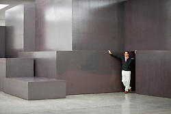 © Licensed to London News Pictures. 27/12/2012. London, UK. Artist Anthony Gormely poses with his installation piece 'Model' (2012) at the White Cube gallery in London today (27/11/12). The exhibition of his work, entitled 'Model', runs from 28th November 2012 to 10th February 2013 at the White Cube's Bermondsey Gallery. Photo credit: Matt Cetti-Roberts/LNP
