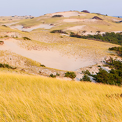 "The dunes in ""The Provincelands"" at Cape Cod National Seashore in Provincetown, Massachusetts."