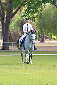 Darwin Horse and Pony Club