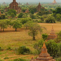 The pagodas of Bagan