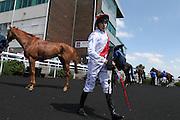 Jockey Luke Morris with Zamani in the winner's enclosure for  the 2.20 race at Brighton Racecourse, Brighton & Hove, United Kingdom on 10 June 2015. Photo by Bennett Dean.