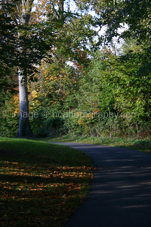 Cabinteely Park Dublin Ireland Slightly blurred